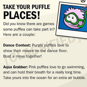 Puffle Secret